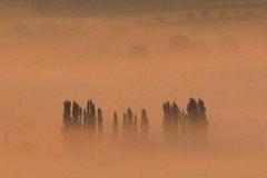 01-mists-04