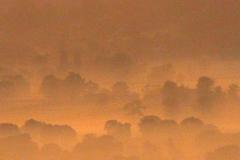 01-mists-05