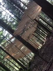 Mireille Fulpuis , Haut Bois