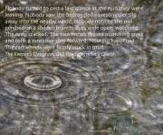 The wet watchers