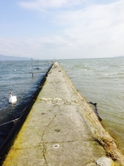 Le Tène et Lake Neuchatel