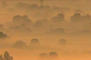 01-mists-03