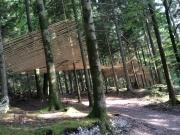 Mireille Fulpuis, Haut Bois