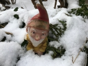 The hard life of Swiss gnomes in Winter