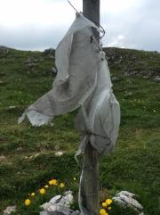Jura - wind